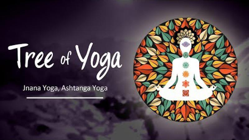 The Tree of Yoga : Episode #5 - Jnana Yoga, Ashtanga Yoga | Science of Identity Foundation