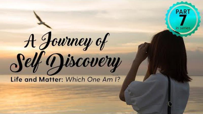 A Journey of Self Discovery #7 : Life and Matter: Which One Am I?
