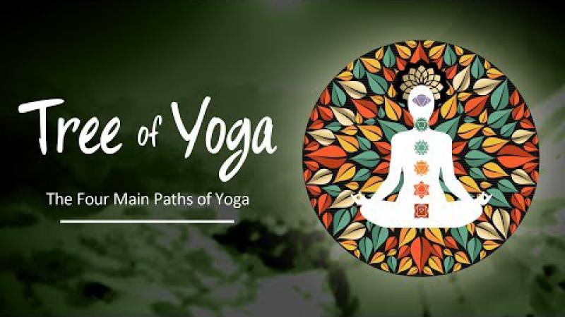 Tree of Yoga : Episode #3 - The Four Main Paths Of Yoga | Science of Identity Foundation