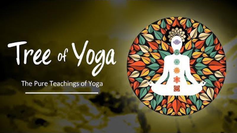 The Tree Of Yoga : Episode #7 - The Pure Teachings Of Yoga | Science of Identity Foundation