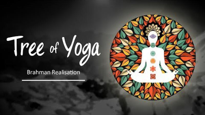 Tree of Yoga : Episode #4 -  Brahman Realisation | Science of Identity Foundation