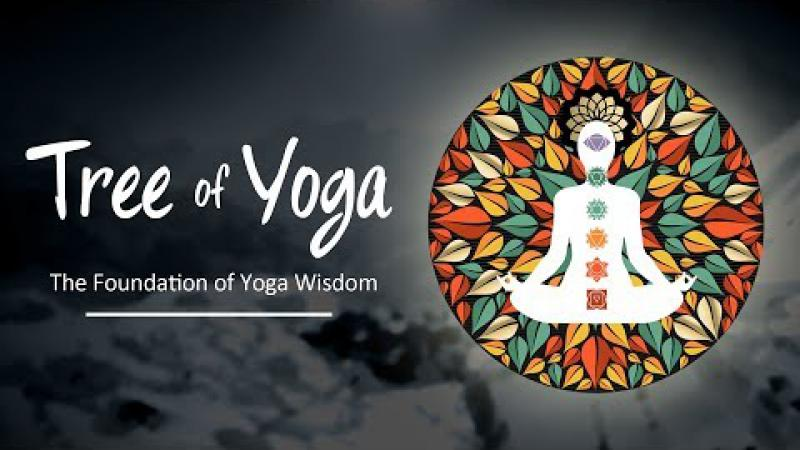 Tree Of Yoga : Episode #2 - The Foundation Of Yoga Wisdom | Science of Identity Foundation